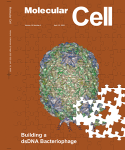 mmmol_cell_cover